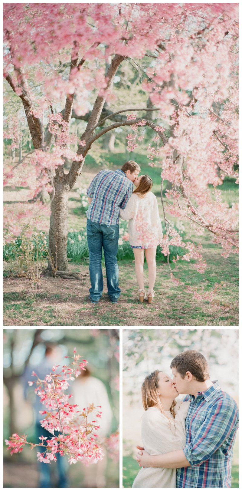 Cherry Blossom Central Park Engagement photos